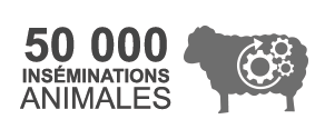 50000 inséminations animales